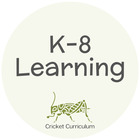 Cricket Curriculum and Computer Teacher Solutions