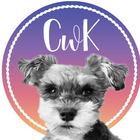 cTc ChalkTeachCreate