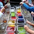 Curiosity Club   science and art enrichment