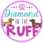 Diamond in the Ruff