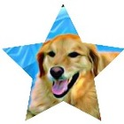 Dog Star Publishing
