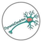 Dynamic Dendrites