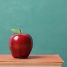 Easy Elementary Teaching