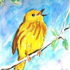 ELA Content Canary