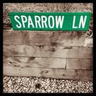 Erin Sparrow
