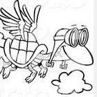 Flying Turtle Classroom
