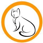 Gem's Adventures
