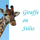 GiraffeOnStilts