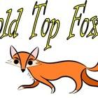 Gold Top Fox