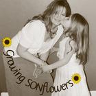 Growing SONflowers