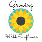 Growing Wild Sunflowers