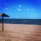 Gulf Coast Creations