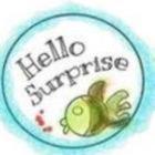 Hello Surprise