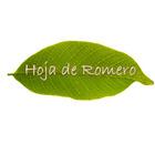 Hoja de Romero