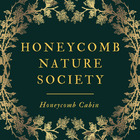 Honeycomb Cabin