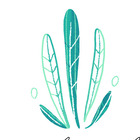 IBteacher4th