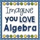 Imagine You Love Algebra