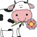 It's All About the Moo