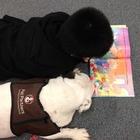 K-5 Reading Corner