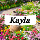 Kayla's Math Videos