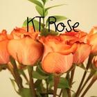 KT Rose