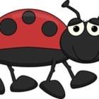 Ladybug Learning