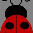 Ladybug Preschool