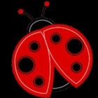 Ladybugs and More