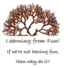 Learning from Fun