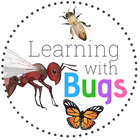Learning with Bugs