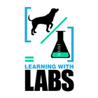 Learning with Labs