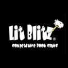Lit Blitz by Pam Freed