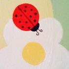 Literacy Ladybug
