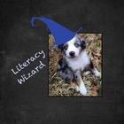 Literacy Wizard