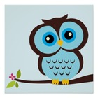 Little Owl Resources
