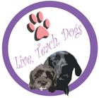Live Teach Dogs