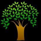 LMN TREE UNDERGROUND