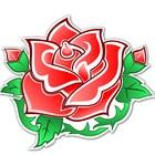 Madisyn Rose