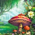 Magic Forest Academy