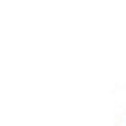 Marisa P