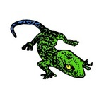 Math Gecko and Music Scores