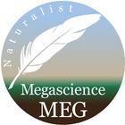 Megascience Meg