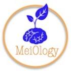 MeiOlogy