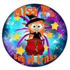 Miss T's Bag of tricks