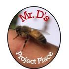 Mr Ds Project Place