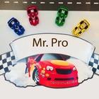 Mr Pro's Store