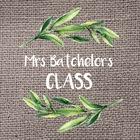 Mrs Batchelor's Class
