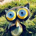 Ms Music Owl