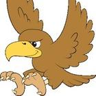 My Falcons