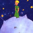 My Spanish Resources